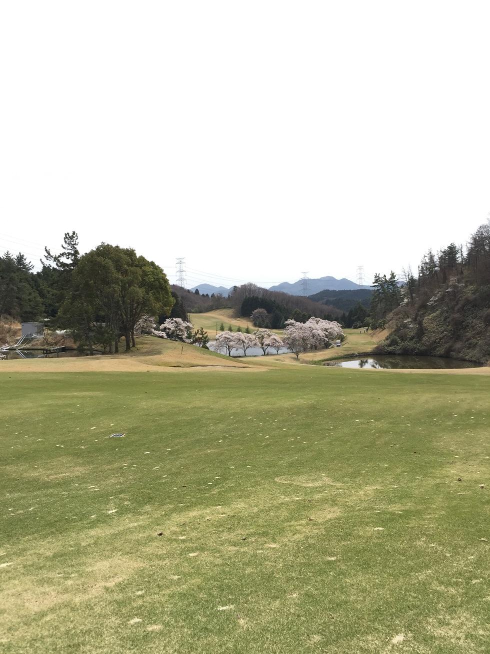 春のゴルフコンペ